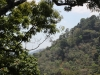 Fly Hanuman / Lanciarsi tra gli alberi della foresta di Phuket / © phuket-vacanze.com, PH. Monica Costa | LAD