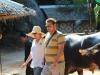 Elephant Treking / Passeggiata sugli elefanti, © phuket-vacanze.com, PH. Monica Costa | LAD