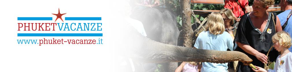treking con elefanti e free time con loro!